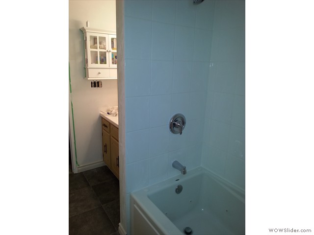 New tub & shower faucets
